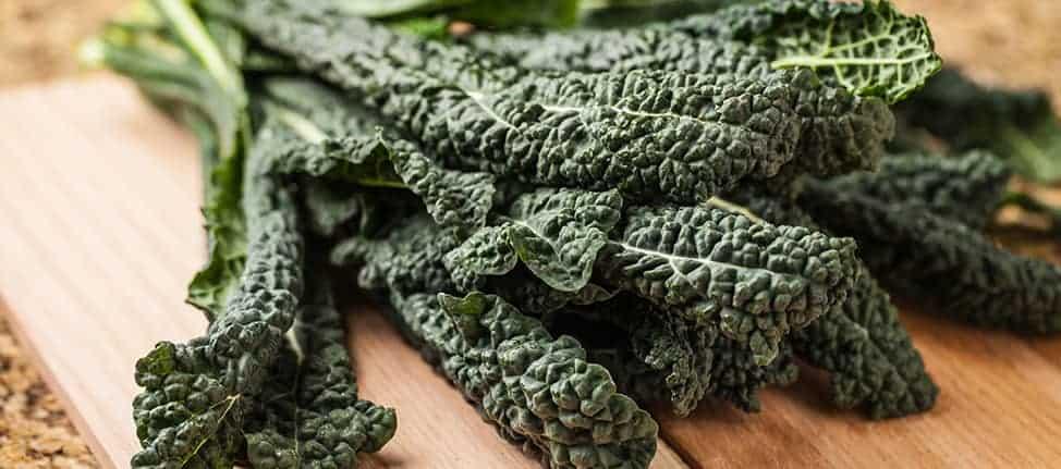 Kale Chips Main